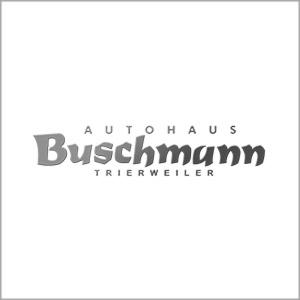 Referenz Kunde Webdesign Fotografie Autohaus Buschmann Trierweiler