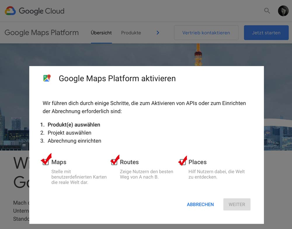 Google Maps Platform API erstellen